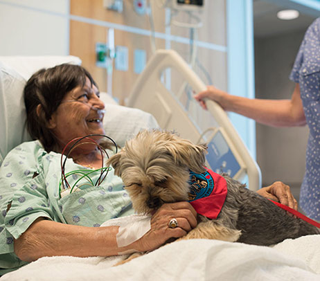 Pet Therapy Spreads Joy to Patients, Visitors and Employees at Eskenazi Health